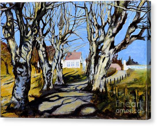 Countryside Canvas Print - White Grove by Suzann's Art