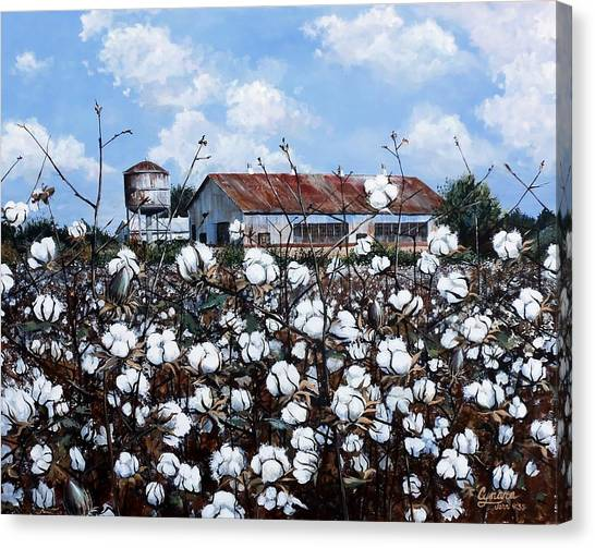 White Harvest Canvas Print