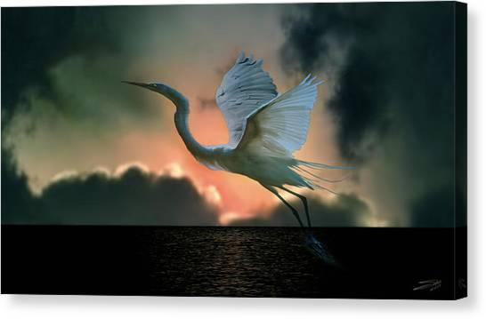 White Heron At Sundown Canvas Print