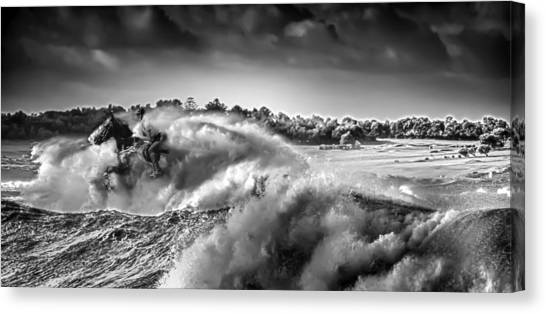White Horses Canvas Print