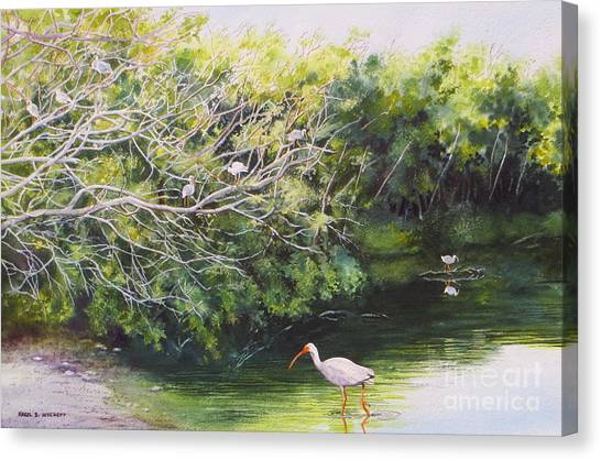 White Ibis Haven Canvas Print