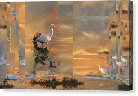 White Ibis In Abstract Canvas Print