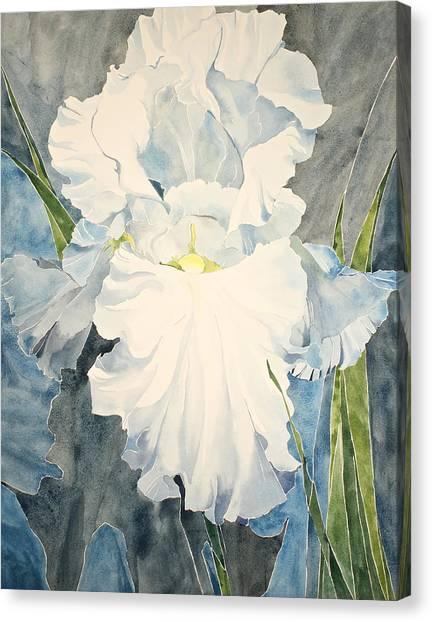 White Iris - For Van Gogh - Posthumously Presented Paintings Of Sachi Spohn   Canvas Print