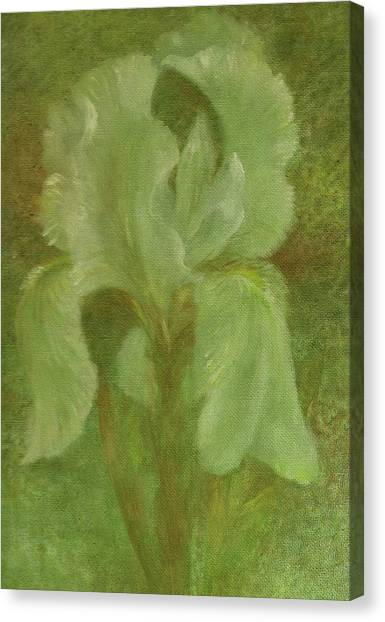 Canvas Print featuring the painting White Iris Painterly Texture by Judith Cheng