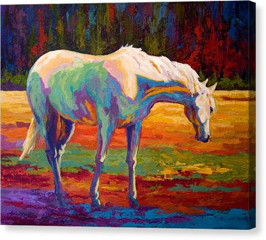 Rodeos Canvas Print - White Mare II by Marion Rose