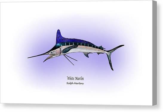 White Marlin Canvas Print by Ralph Martens
