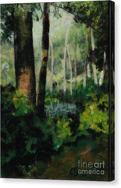 White Mountain Woods Canvas Print