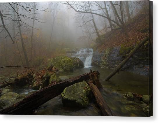 White Oak Canyon Safari Canvas Print