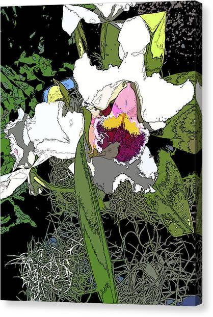 White Orchid Canvas Print by Adina Campbell