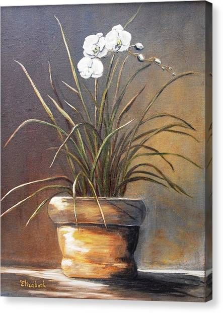 White Orchid In Oil Canvas Print by Beth Maddox