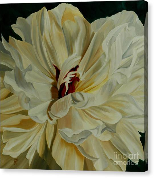 White Peony Canvas Print by Julie Pflanzer