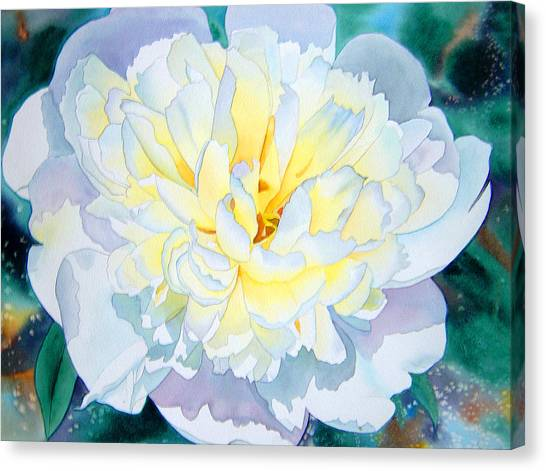 White Peony Canvas Print by Teresa Boston
