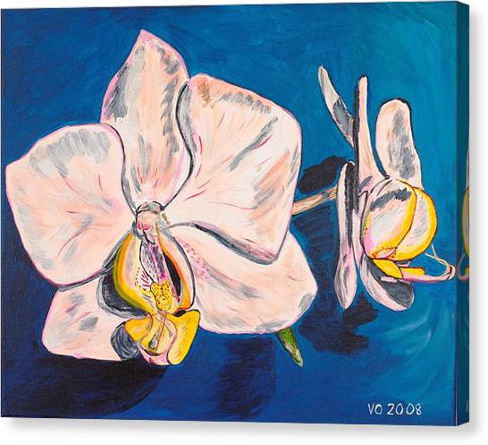 White Phalaenopsis Orchids Canvas Print