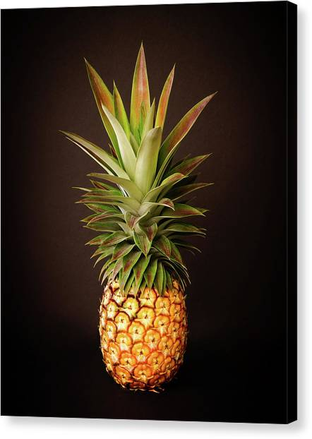 Canvas Print featuring the photograph White Pineapple King by Denise Bird