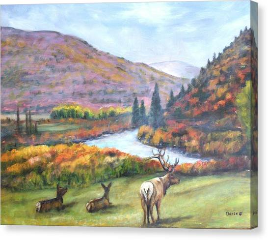 White River Canvas Print by Darla Joy  Johnson
