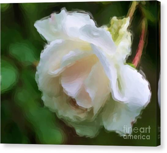 White Rose In Paint Canvas Print