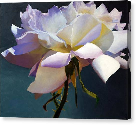 White Rose Of Eden Canvas Print