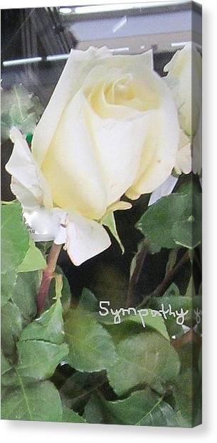 White Rose - Sympathy Card Canvas Print