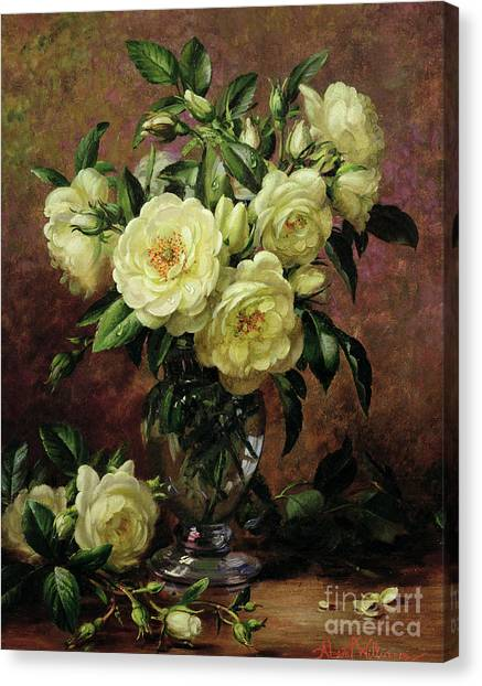 Rose In Bloom Canvas Print - White Roses - A Gift From The Heart by Albert Williams
