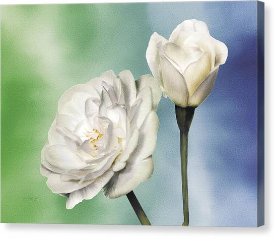 White Roses Canvas Print by Jan Baughman