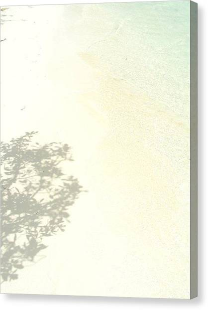 White Sand Canvas Print - White Sand by Stephany Theriault