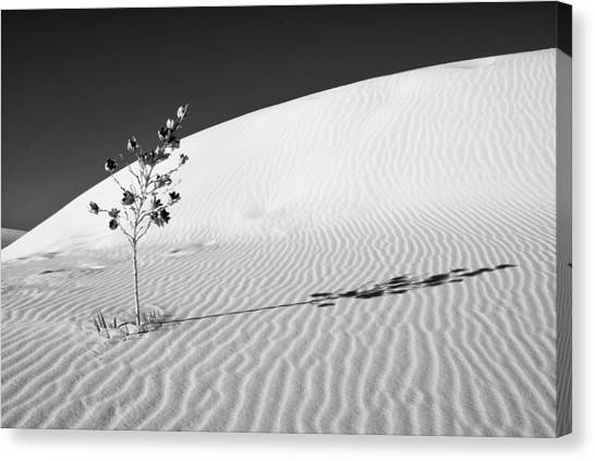 White Sands 4 Canvas Print