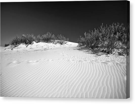 White Sands 5 Canvas Print