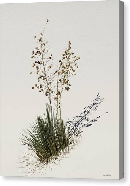 White Sands Yucca Canvas Print