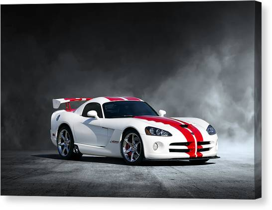 Vipers Canvas Print - White Snake by Peter Chilelli