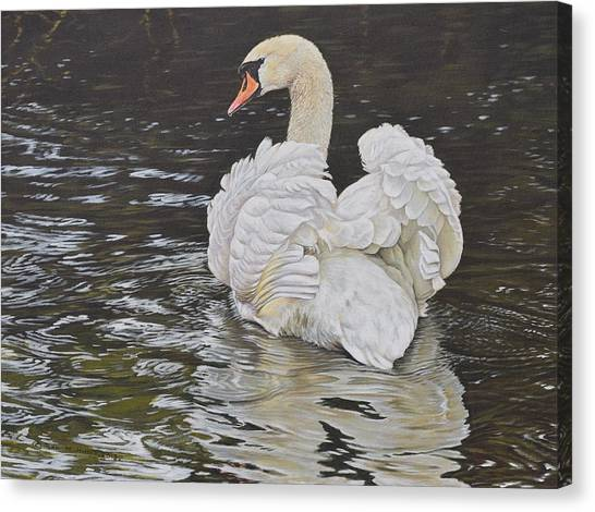 Canvas Print featuring the painting White Swan by Alan M Hunt