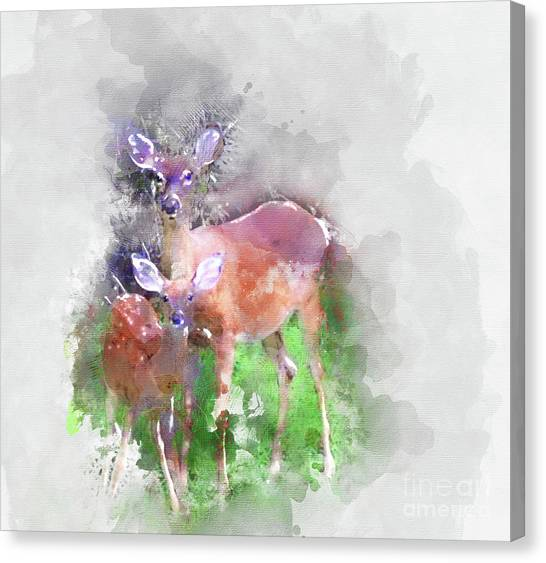White Tail Deer In Watercolor Canvas Print