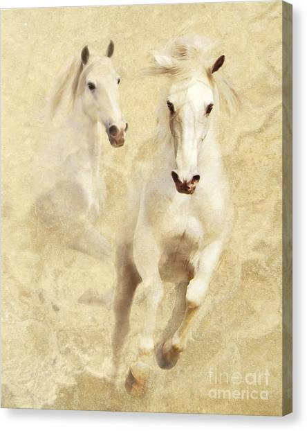 Canvas Print featuring the photograph White Thunder by Melinda Hughes-Berland