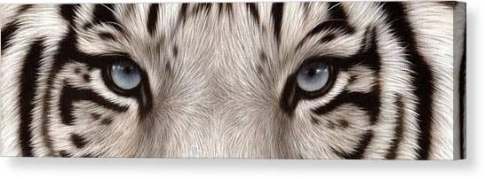 White Tiger Eyes Canvas Print