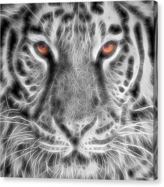 Zoo Canvas Print - White Tiger by Tom Mc Nemar
