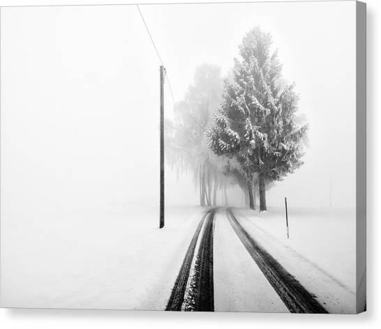 Tracks Canvas Print - White Tree Gate by Franz Bogner
