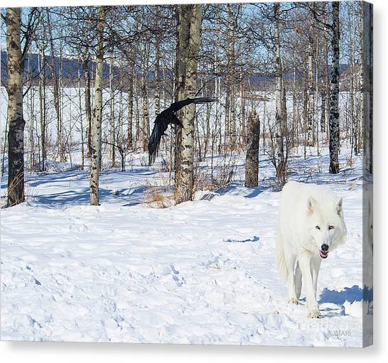 White Wolfdog Canvas Print