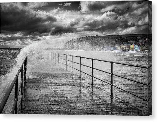Mono color canvas print whitehead with a splash of colour by nigel r bell