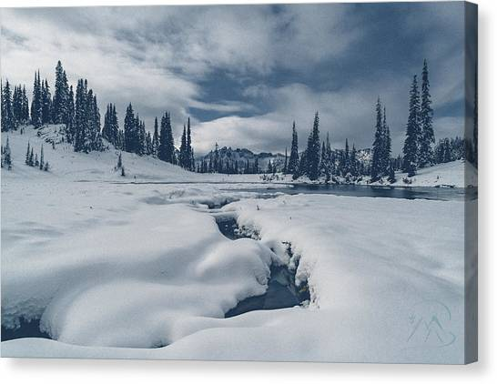 Canvas Print featuring the photograph Whiteout by Gene Garnace
