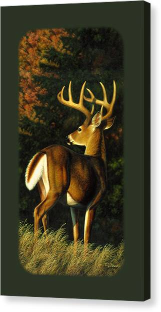 White-tailed Buck Canvas Print - Whitetail Buck Phone Case by Crista Forest