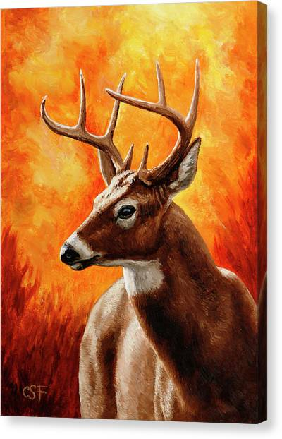 White-tailed Deer Canvas Print - Whitetail Buck Portrait by Crista Forest