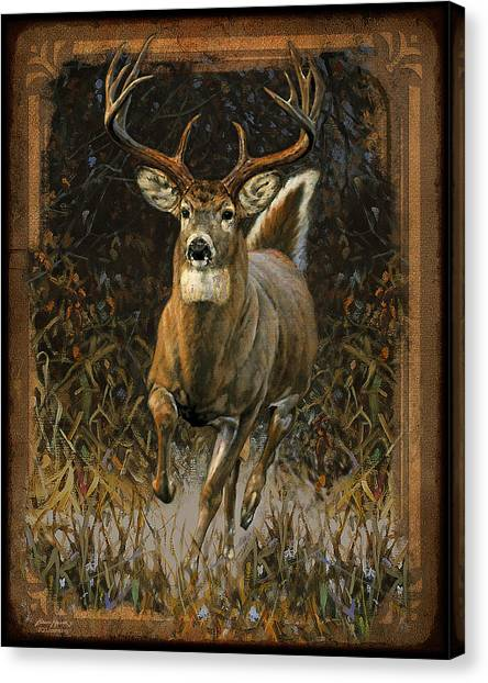 Antlers Canvas Print - Whitetail Deer by JQ Licensing