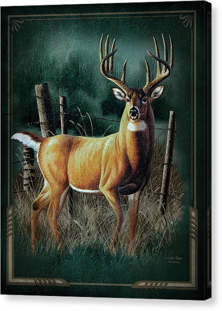Hunting Canvas Print - Whitetail Deer by JQ Licensing