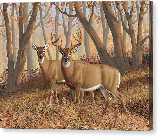 White-tailed Deer Canvas Print - Whitetail Deer Painting - Fall Flame by Crista Forest