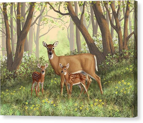 White-tailed Deer Canvas Print - Whitetail Doe And Fawns - Mom's Little Spring Blossoms by Crista Forest