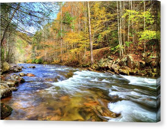 Whitetop River Fall Canvas Print