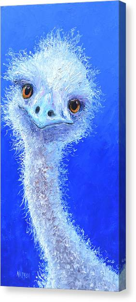 Emus Canvas Print - Who Me Never  by Jan Matson