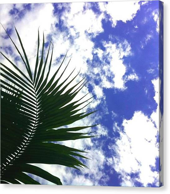 Kenyan Canvas Print - Who Says The Sky Is The Limit #sky by Kenya Bates