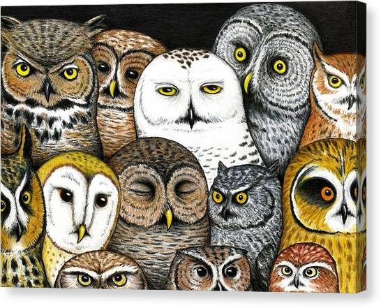 Owls Canvas Print - Who's Hoo by Don McMahon