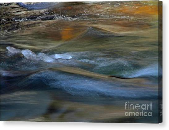 Canvas Print - Whychus Creek by Gary Wing