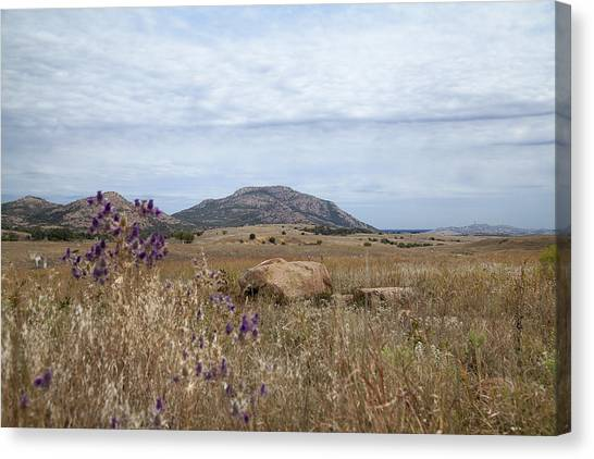 Wichita Landscape Canvas Print
